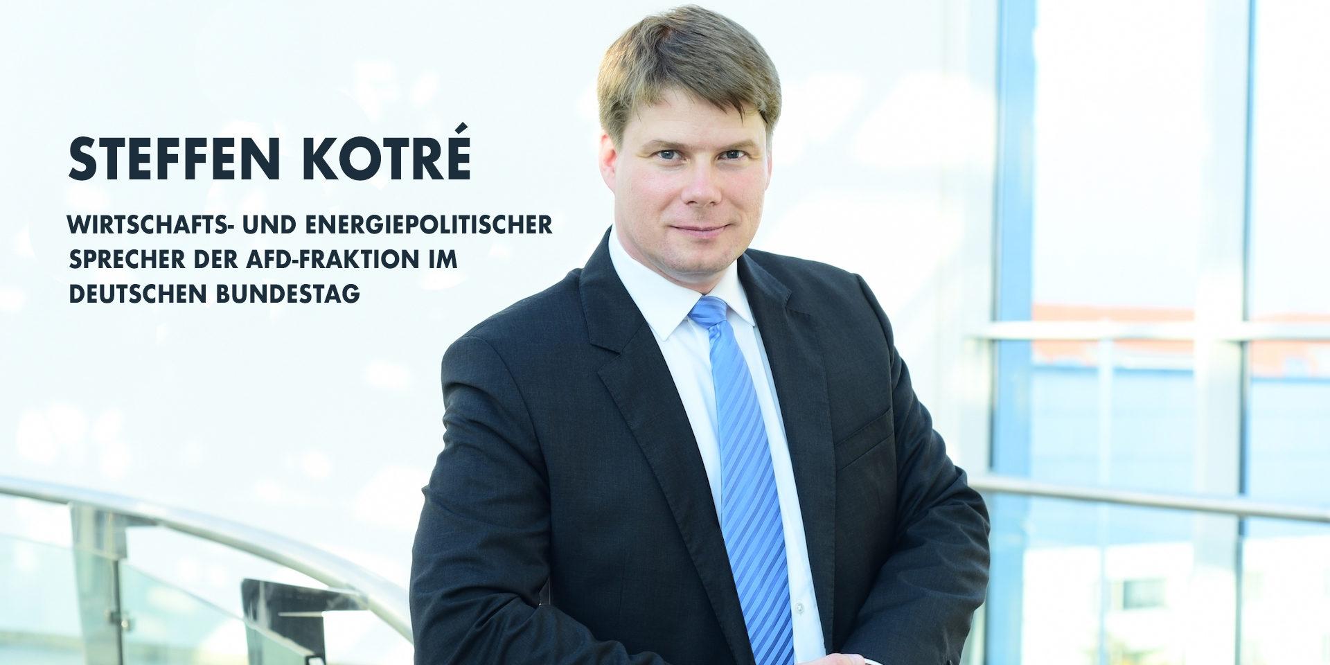 Steffen Kotré - Wirtschafts- und Energiepolitik im Bundestag